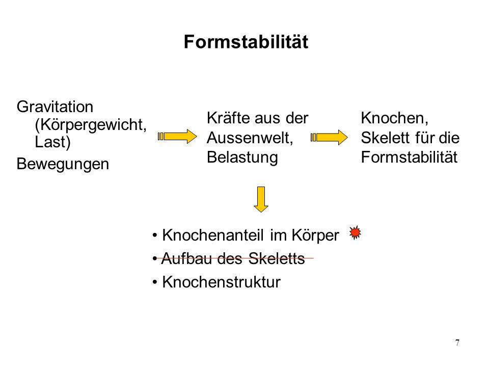 8 Vergleich des Skeletts von einigen Tieren Lemming Nilpferd Knochenanteil bei verschiedenen Tieren