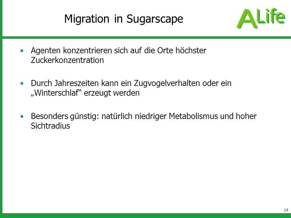 19 Migration in Sugarscape Agenten konzentrieren sich auf die Orte höchster Zuckerkonzentration Durch Jahreszeiten kann ein Zugvogelverhalten oder ein