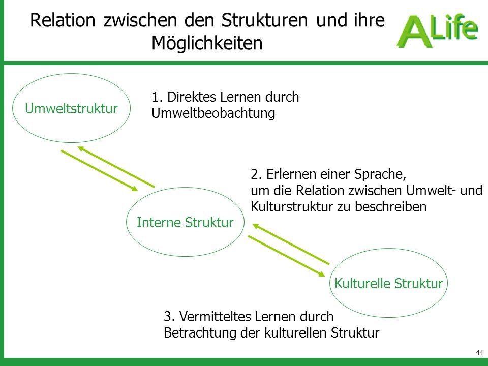 44 Relation zwischen den Strukturen und ihre Möglichkeiten Umweltstruktur Kulturelle Struktur Interne Struktur 1. Direktes Lernen durch Umweltbeobacht