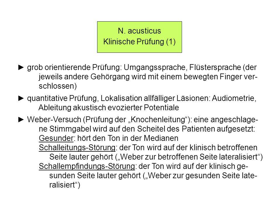 N. acusticus Klinische Prüfung (1) grob orientierende Prüfung: Umgangssprache, Flüstersprache (der jeweils andere Gehörgang wird mit einem bewegten Fi