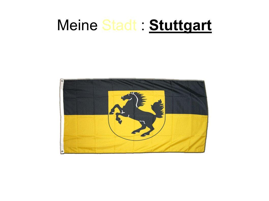 Die Organisation: Wir fahren mit dem Zug.Wir fahren von Paris nach Stuttgart.