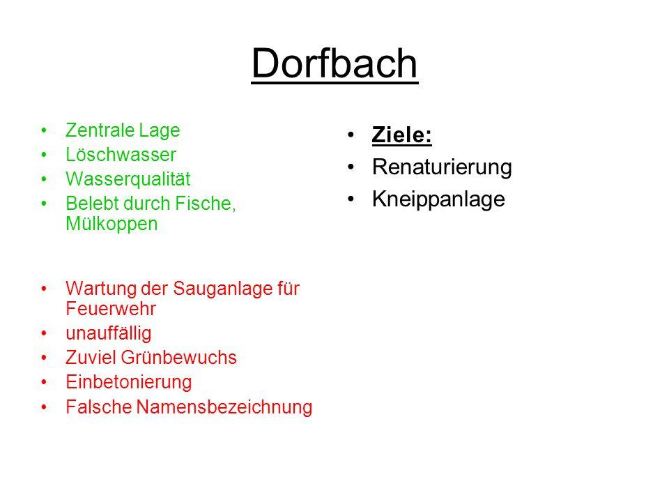 Dorfbach Zentrale Lage Löschwasser Wasserqualität Belebt durch Fische, Mülkoppen Wartung der Sauganlage für Feuerwehr unauffällig Zuviel Grünbewuchs E