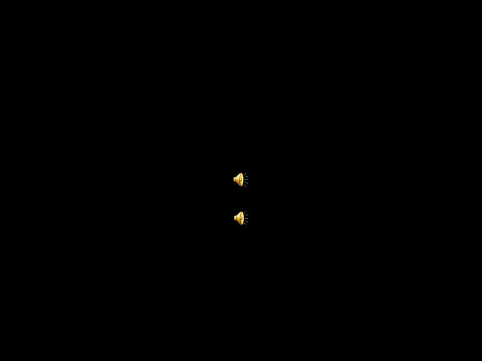 www.kapo.lu.ch Entscheidende Faktoren Einführung Grundsätzliches Traumareaktionen 3-Schritte-Philosophie Vorbeugende Massnahmen Nachbereitung Konkrete Fragen Fazit Ungleichgewicht = Stress Bewältigungsmöglichkeiten Umweltanforderungen Eigene Befindlichkeit Kumulation Umgang mit Stress Stressmanagement = eigenen Wirkungskreis beeinflussen