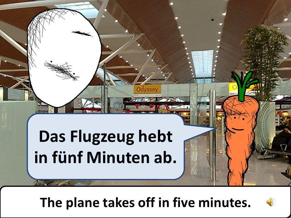 Das Flugzeug hebt in fünf Minuten ab. The plane takes off in five minutes.