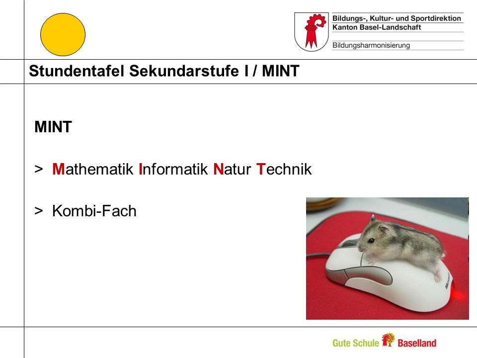 Stundentafel Sekundarstufe I / MINT MINT >Mathematik Informatik Natur Technik >Kombi-Fach
