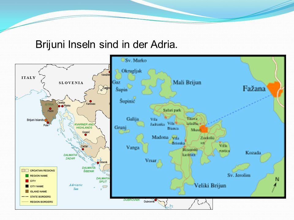 Brijuni Inseln sind in der Adria.