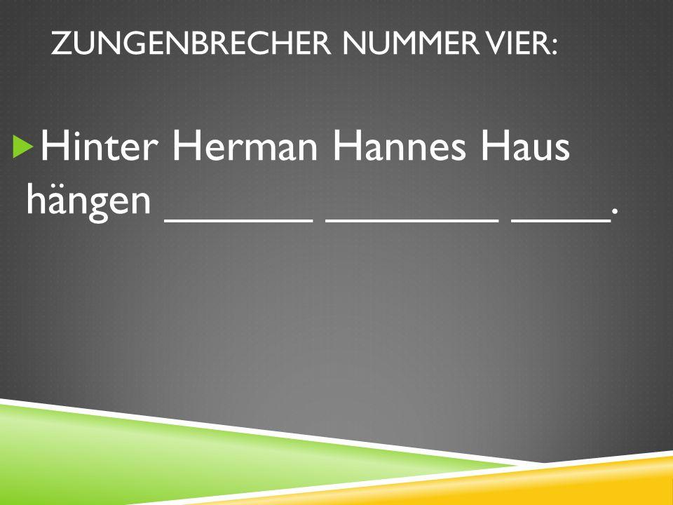 ZUNGENBRECHER NUMMER VIER: Hinter Herman Hannes Haus hängen ______ _______ ____.