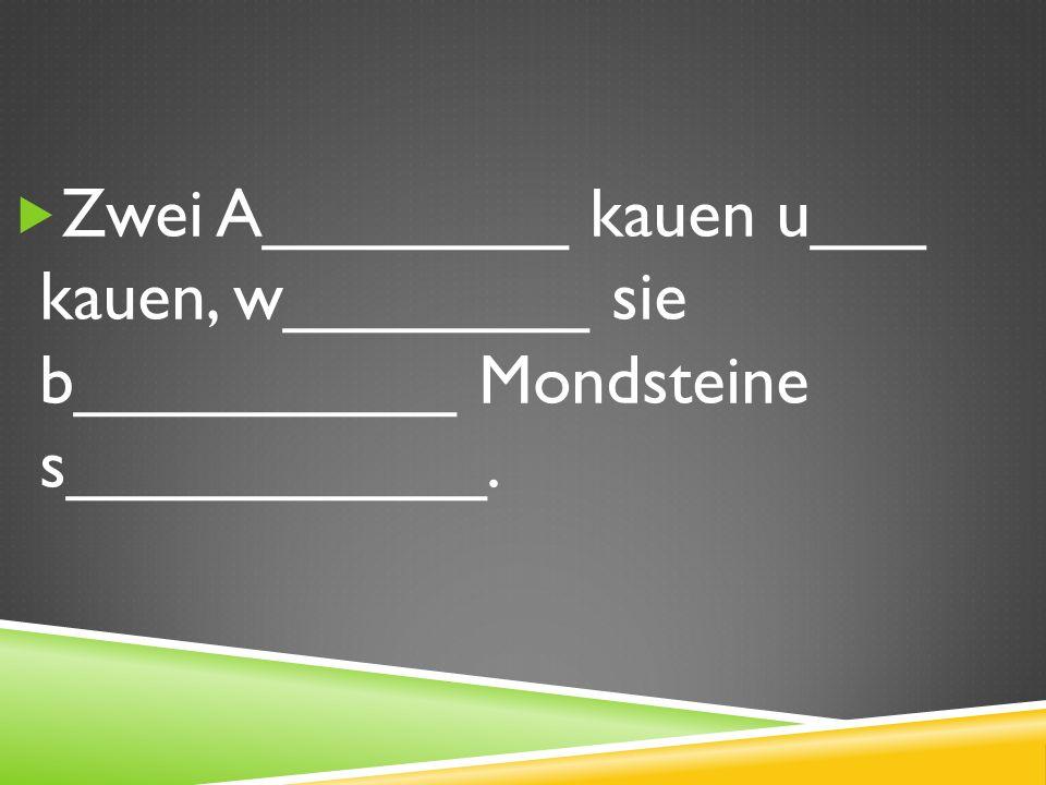 Zwei A________ kauen u___ kauen, w________ sie b__________ Mondsteine s___________.