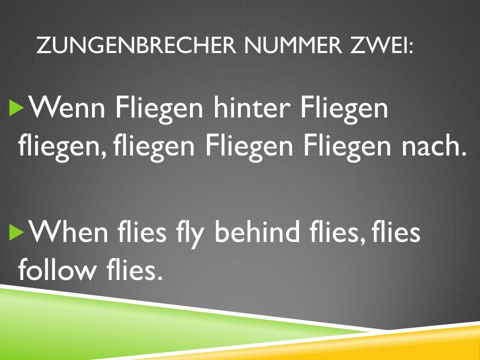 ZUNGENBRECHER NUMMER ZWEI: Wenn Fliegen hinter Fliegen fliegen, fliegen Fliegen Fliegen nach.