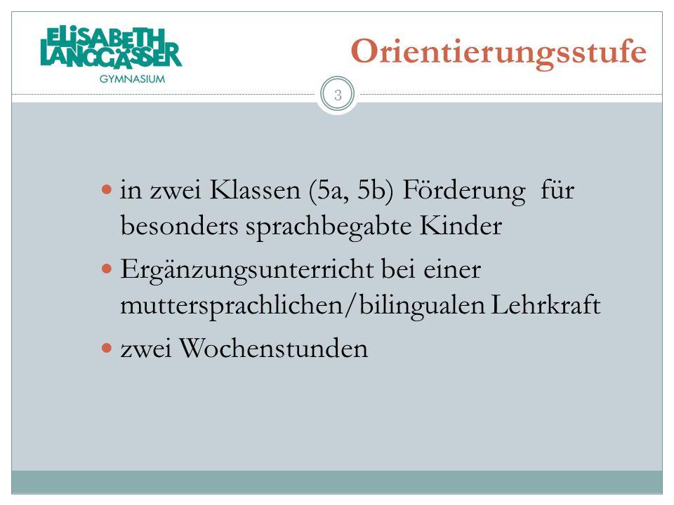 Orientierungsstufe in zwei Klassen (5a, 5b) Förderung für besonders sprachbegabte Kinder Ergänzungsunterricht bei einer muttersprachlichen/bilingualen
