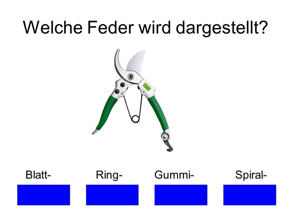 Welche Feder wird dargestellt? Blatt- Ring- Gummi- Spiral-