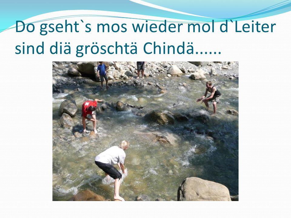 Do gseht`s mos wieder mol d`Leiter sind diä gröschtä Chindä......