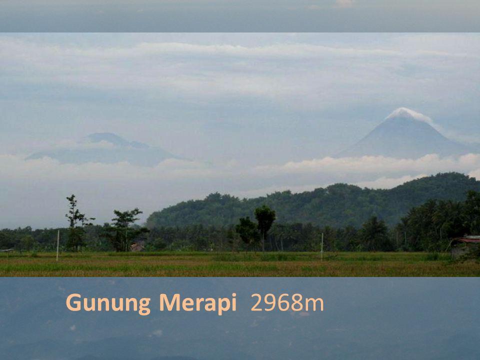 Gunung Merapi 2968m