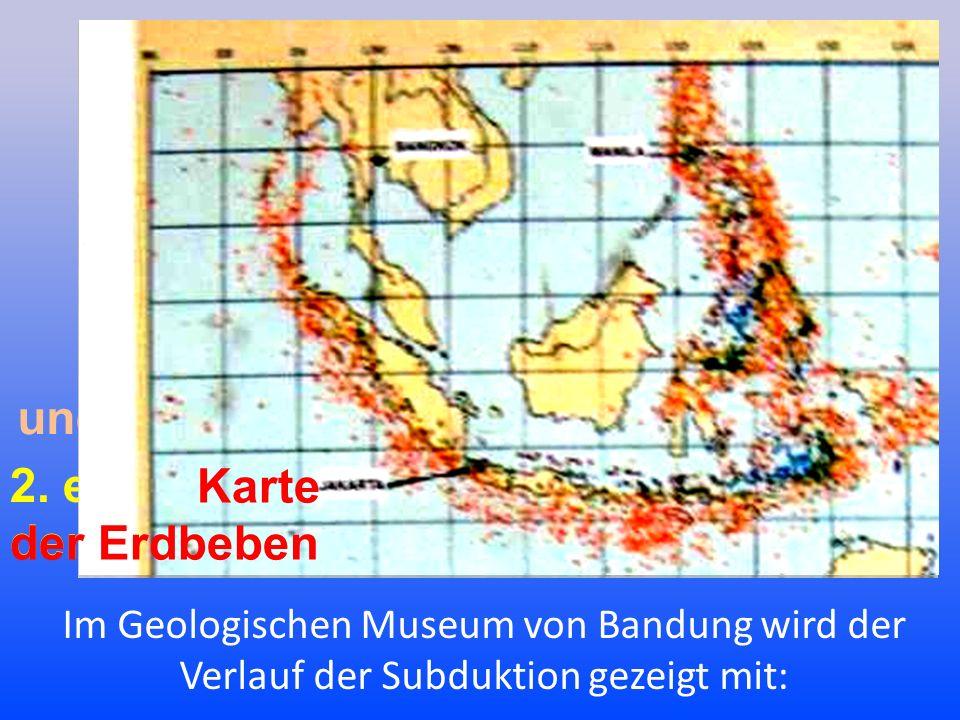Im Geologischen Museum von Bandung wird der Verlauf der Subduktion gezeigt mit: und 2.