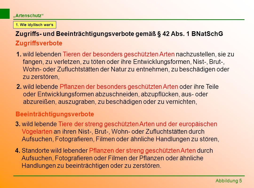 Abbildung 5 Zugriffs- und Beeinträchtigungsverbote gemäß § 42 Abs. 1 BNatSchG 1.wild lebenden Tieren der besonders geschützten Arten nachzustellen, si