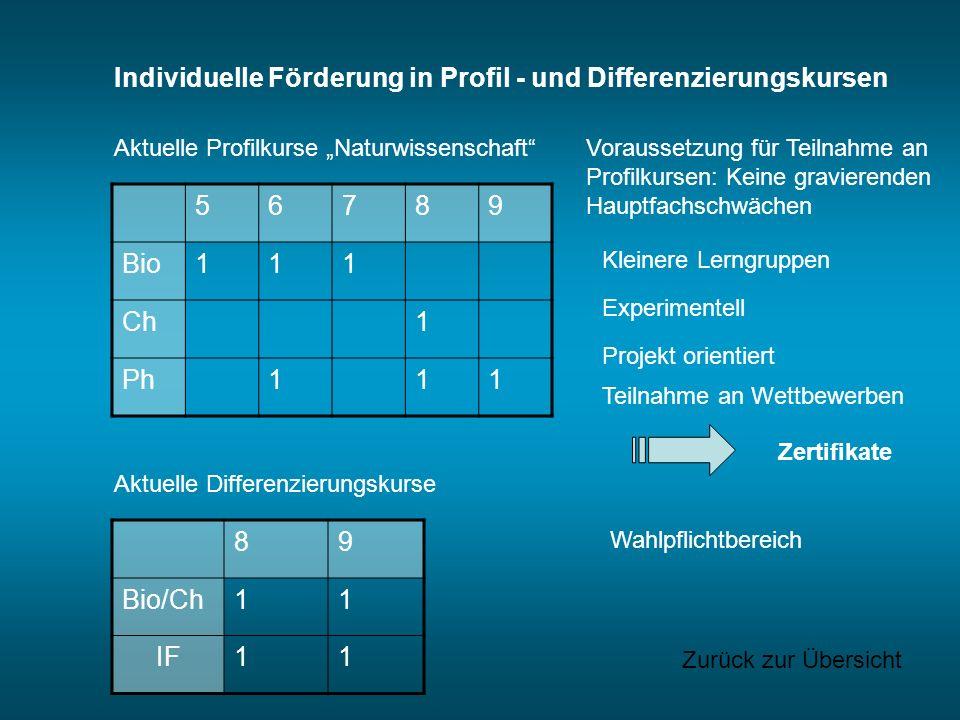 Individuelle Förderung in Profil - und Differenzierungskursen Voraussetzung für Teilnahme an Profilkursen: Keine gravierenden Hauptfachschwächen Aktue