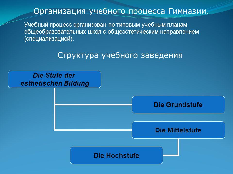 Министерство культуры The Ministry of Culture Выполняемые функции: Курирование коллективного планирования «Банк идей» (в гимназический план).