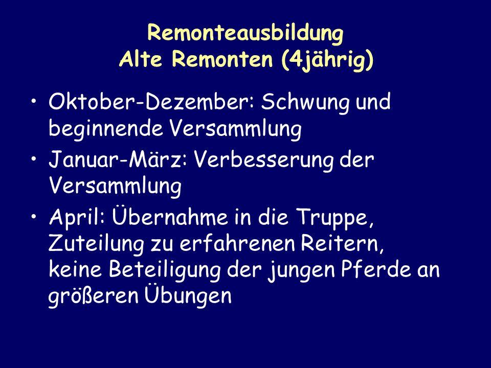Remonteausbildung Alte Remonten (4jährig) Oktober-Dezember: Schwung und beginnende Versammlung Januar-März: Verbesserung der Versammlung April: Überna