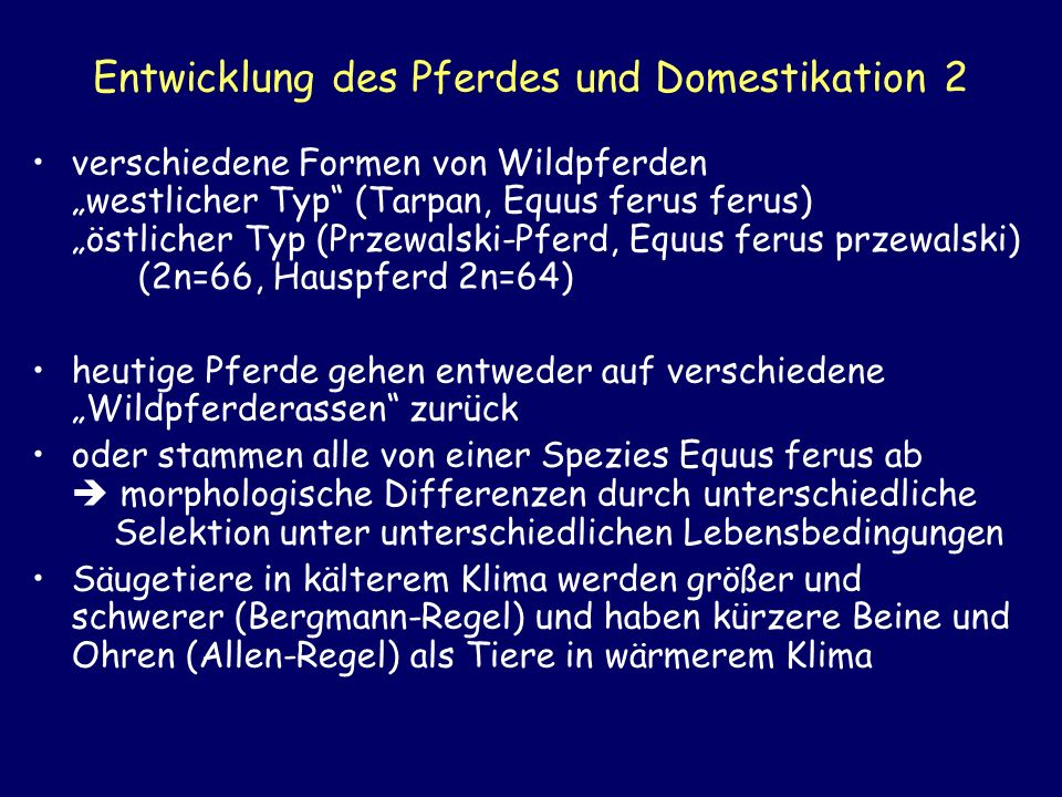 Entwicklung des Pferdes und Domestikation 2 verschiedene Formen von Wildpferden westlicher Typ (Tarpan, Equus ferus ferus) östlicher Typ (Przewalski-P