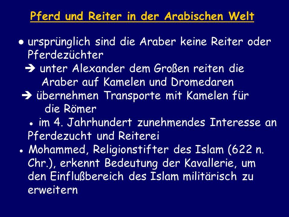 Pferd und Reiter in der Arabischen Welt ursprünglich sind die Araber keine Reiter oder Pferdezüchter unter Alexander dem Großen reiten die Araber auf