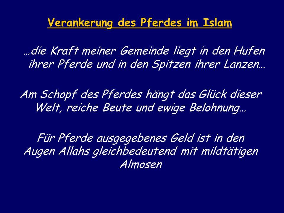 Verankerung des Pferdes im Islam …die Kraft meiner Gemeinde liegt in den Hufen ihrer Pferde und in den Spitzen ihrer Lanzen… Am Schopf des Pferdes hän