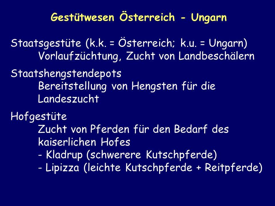 Gestütwesen Österreich - Ungarn Staatsgestüte (k.k. = Österreich; k.u. = Ungarn) Vorlaufzüchtung, Zucht von Landbeschälern Staatshengstendepots Bereit