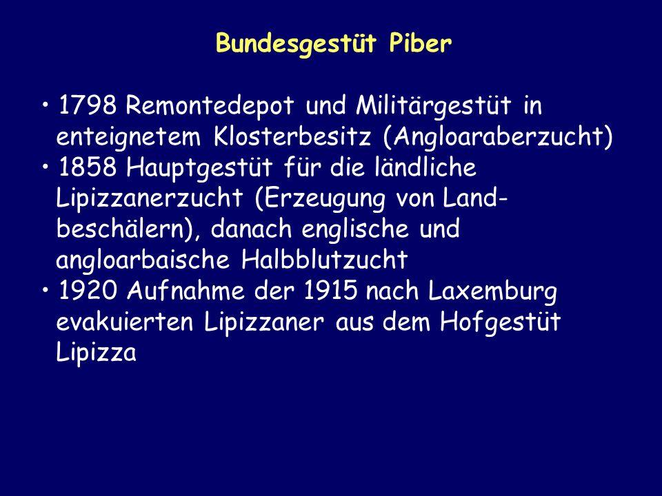 Bundesgestüt Piber 1798 Remontedepot und Militärgestüt in enteignetem Klosterbesitz (Angloaraberzucht) 1858 Hauptgestüt für die ländliche Lipizzanerzu