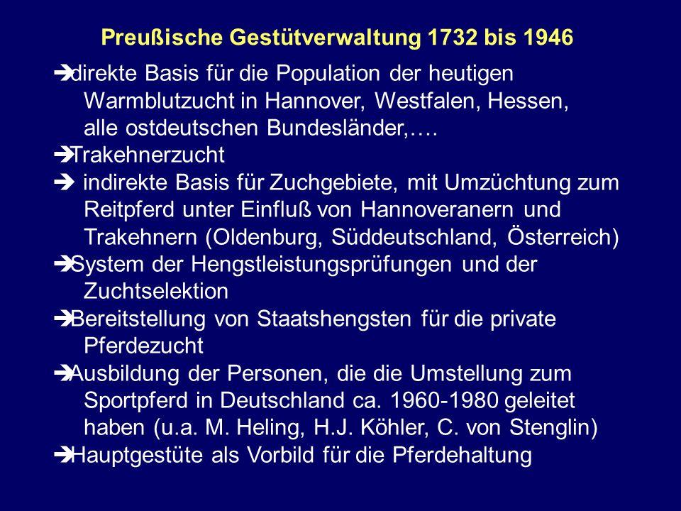 Preußische Gestütverwaltung 1732 bis 1946 direkte Basis für die Population der heutigen Warmblutzucht in Hannover, Westfalen, Hessen, alle ostdeutsche