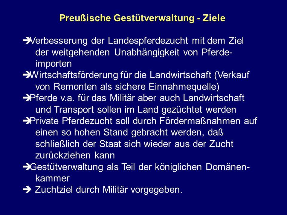 Preußische Gestütverwaltung - Ziele Verbesserung der Landespferdezucht mit dem Ziel der weitgehenden Unabhängigkeit von Pferde- importen Wirtschaftsfö