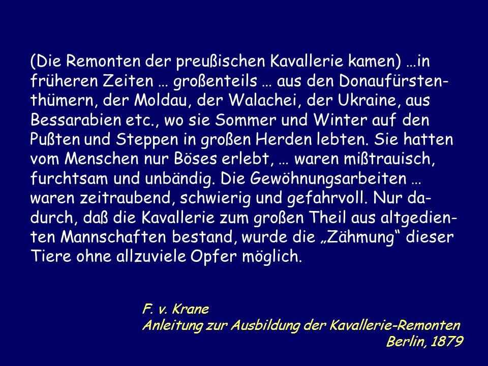 F. v. Krane Anleitung zur Ausbildung der Kavallerie-Remonten Berlin, 1879 (Die Remonten der preußischen Kavallerie kamen) …in früheren Zeiten … großen