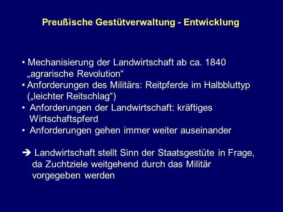 Preußische Gestütverwaltung - Entwicklung Mechanisierung der Landwirtschaft ab ca. 1840 agrarische Revolution Anforderungen des Militärs: Reitpferde i