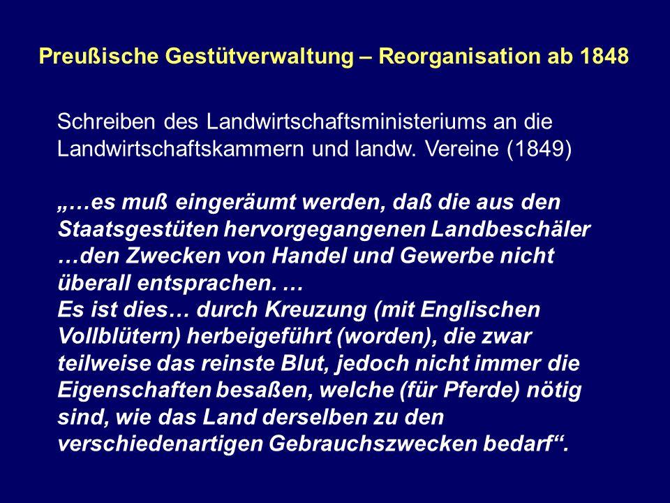 Preußische Gestütverwaltung – Reorganisation ab 1848 Schreiben des Landwirtschaftsministeriums an die Landwirtschaftskammern und landw. Vereine (1849)