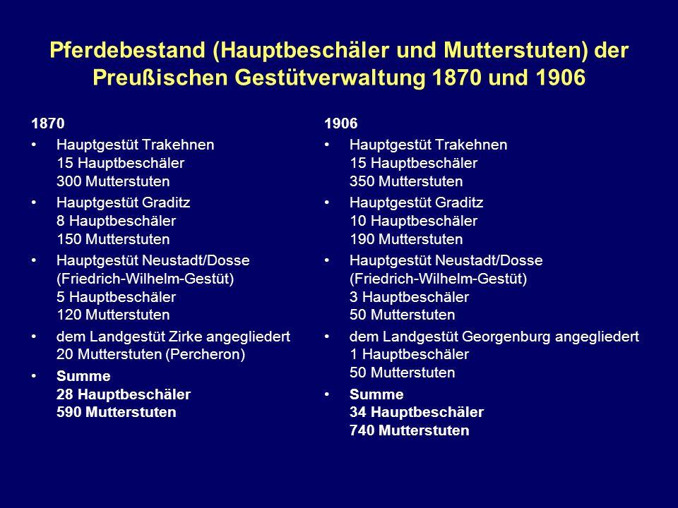 Pferdebestand (Hauptbeschäler und Mutterstuten) der Preußischen Gestütverwaltung 1870 und 1906 1870 Hauptgestüt Trakehnen 15 Hauptbeschäler 300 Mutter