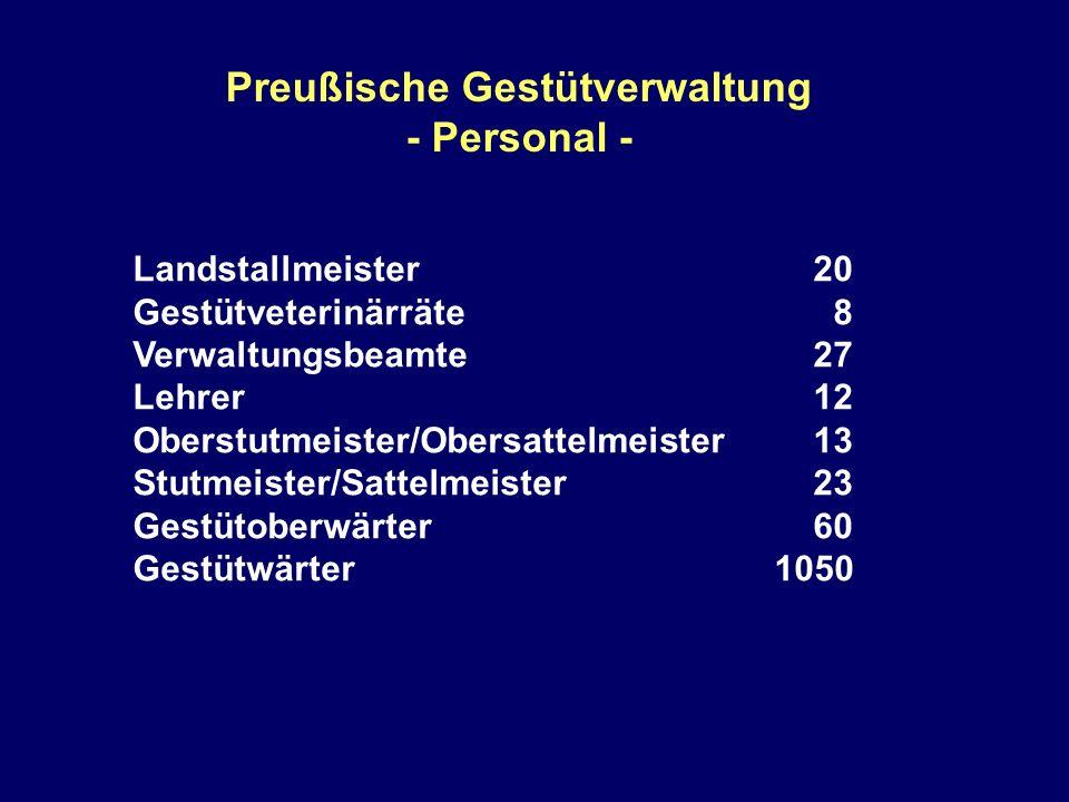Preußische Gestütverwaltung - Personal - Landstallmeister 20 Gestütveterinärräte 8 Verwaltungsbeamte 27 Lehrer 12 Oberstutmeister/Obersattelmeister 13