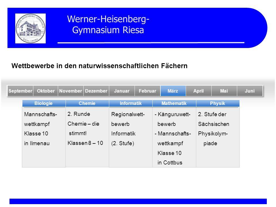 Werner-Heisenberg- Gymnasium Riesa Mannschafts- wettkampf Klasse 10 in Ilmenau Regionalwett- bewerb Informatik (2. Stufe) - Känguruwett- bewerb - Mann
