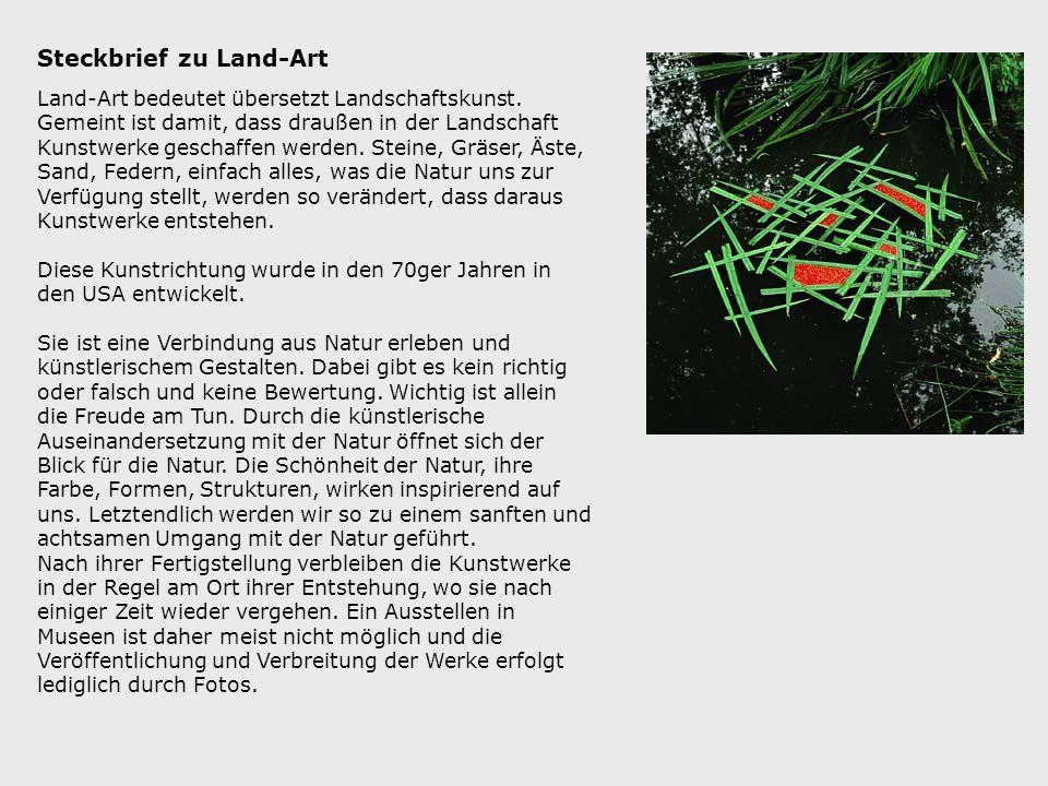 Steckbrief zu Land-Art Land-Art bedeutet übersetzt Landschaftskunst. Gemeint ist damit, dass draußen in der Landschaft Kunstwerke geschaffen werden. S