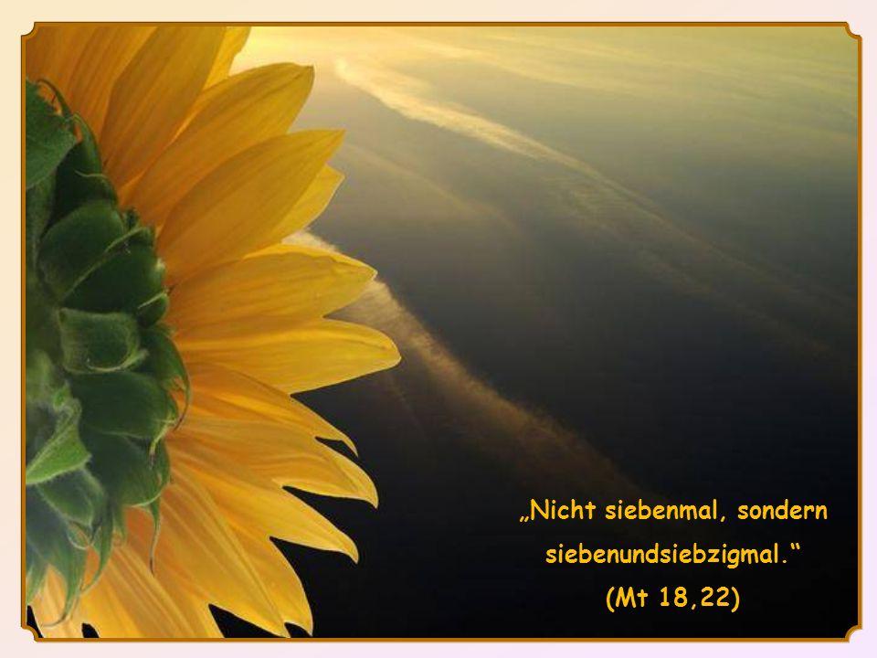 Nicht siebenmal, sondern siebenundsiebzigmal. (Mt 18,22)