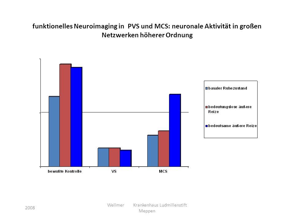 funktionelles Neuroimaging in PVS und MCS: neuronale Aktivität in großen Netzwerken höherer Ordnung 2008 Wellmer Krankenhaus Ludmillenstift Meppen
