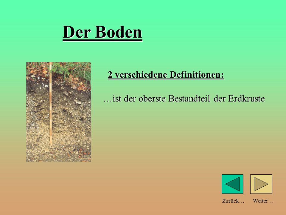 Weiter…Zurück… Teilchengröße und Bodeneigenschaften: schlechtWasserspeicherunggut Durchlüftungschlecht Wärmespeicherung Sandboden große Teilchen Tonboden feine Teilchen