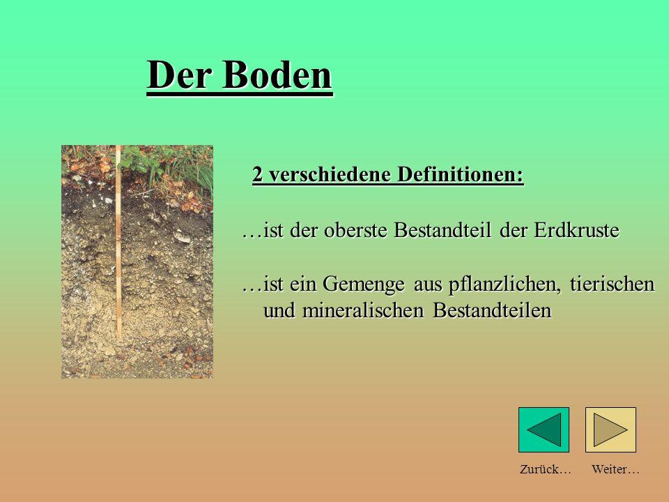 Weiter… Der Boden …ist der oberste Bestandteil der Erdkruste …ist ein Gemenge aus pflanzlichen, tierischen und mineralischen Bestandteilen 2 verschiedene Definitionen: Zurück…