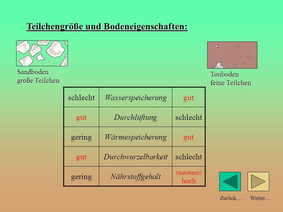 Weiter…Zurück… Teilchengröße und Bodeneigenschaften: schlechtWasserspeicherunggut Durchlüftungschlecht geringWärmespeicherunggut Durchwurzelbarkeitsch