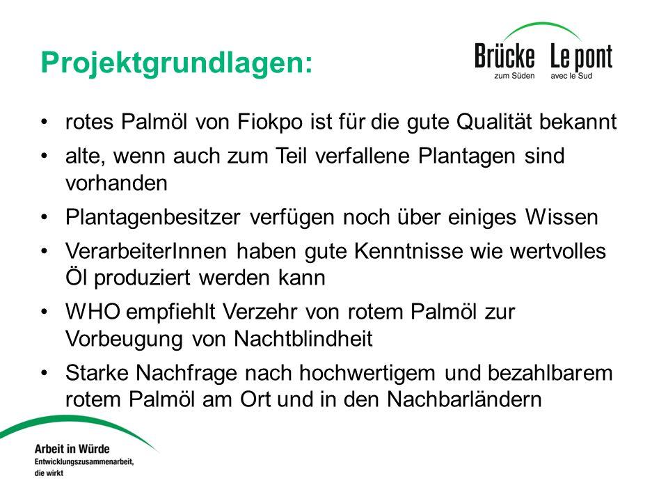 Projektgrundlagen: rotes Palmöl von Fiokpo ist für die gute Qualität bekannt alte, wenn auch zum Teil verfallene Plantagen sind vorhanden Plantagenbes