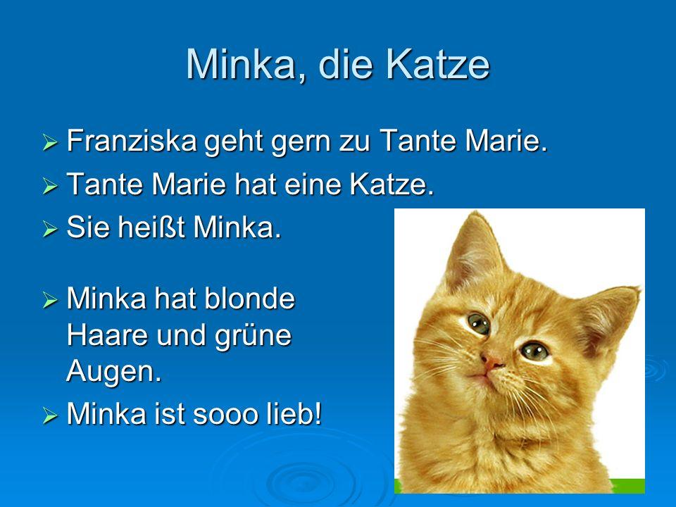 16 Minka, die Katze Franziska geht gern zu Tante Marie. Franziska geht gern zu Tante Marie. Tante Marie hat eine Katze. Tante Marie hat eine Katze. Si