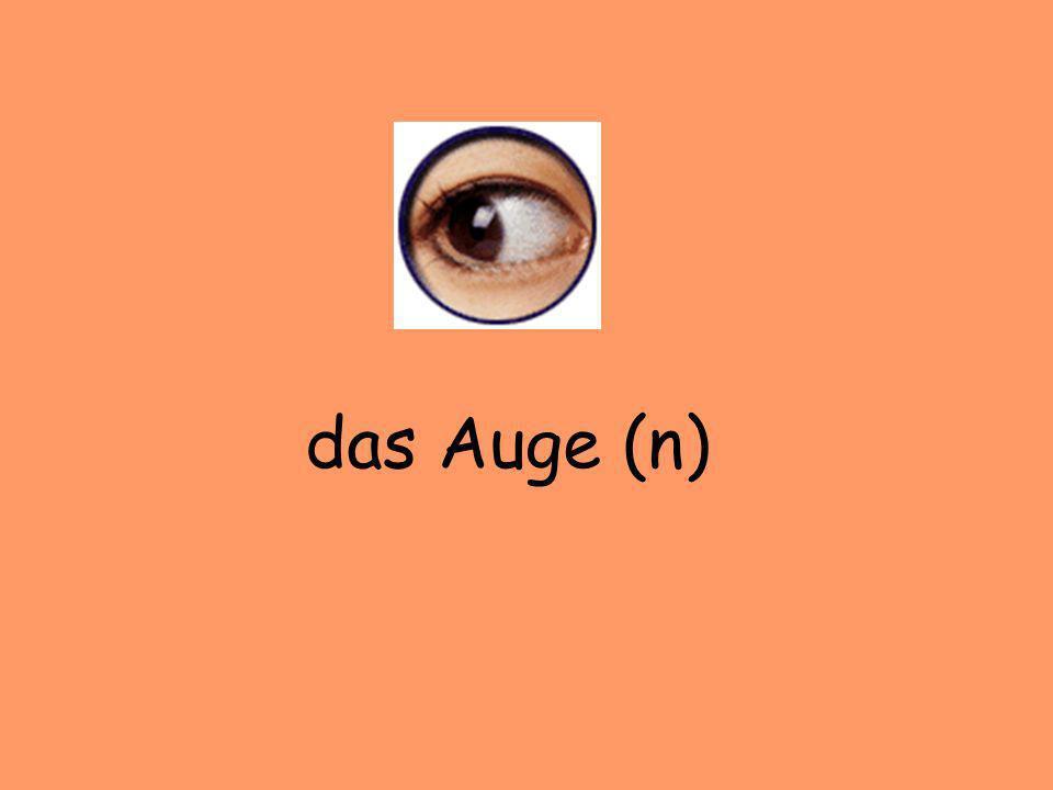 das Auge (n)