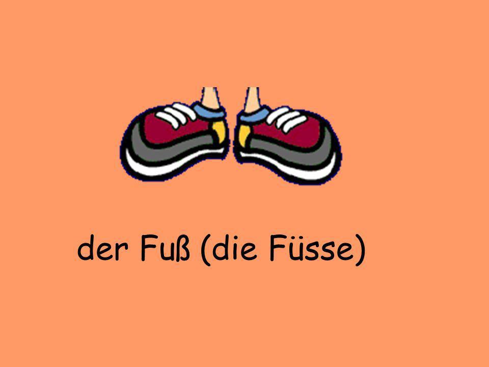 der Fuß (die Füsse)