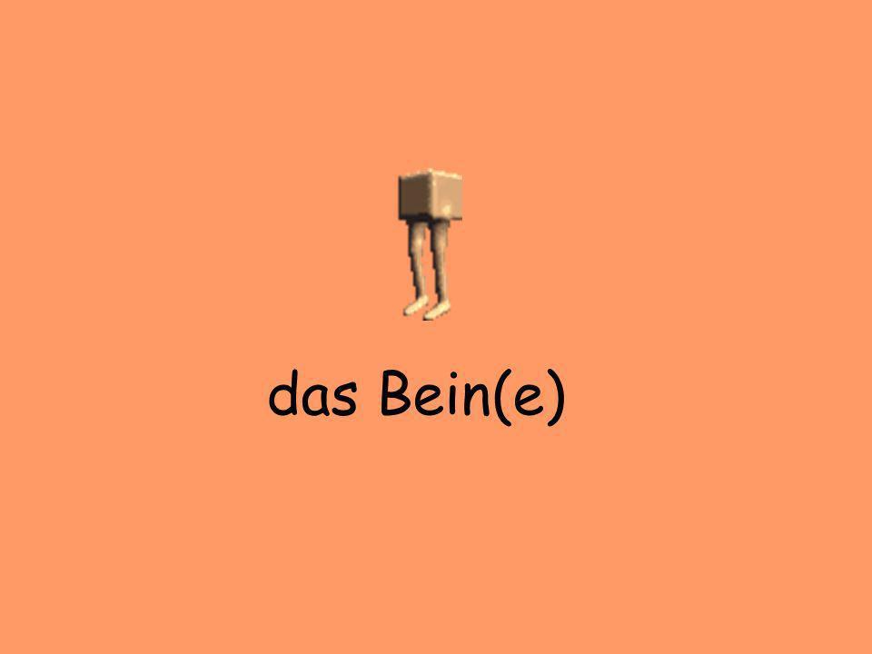 das Bein(e)