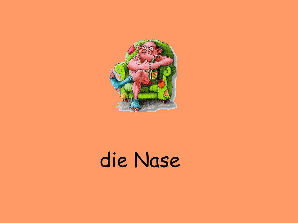 der Bauchdie Nase der Hals das Ohr(en) das Gesicht der Rücken das Knie der Arm(e) das Bein(e) das Auge(n) die Zunge der Mund der Fuß (¨sse) die Hand (¨e) .