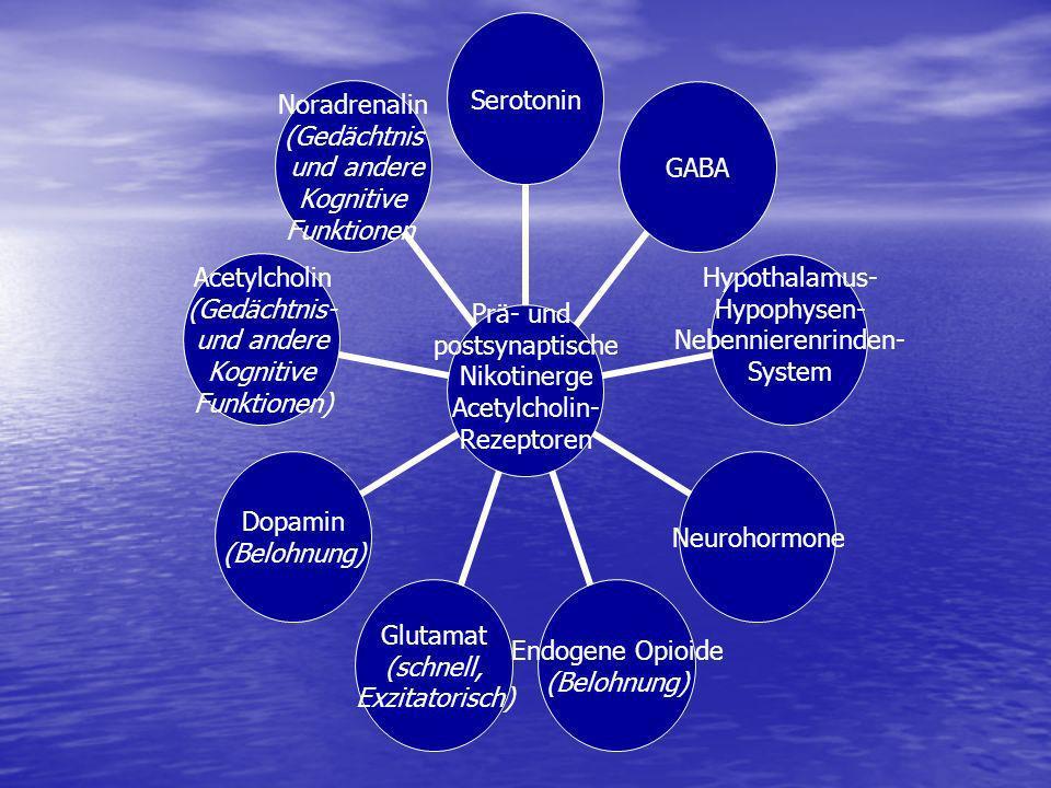 Prä- und postsynaptische Nikotinerge Acetylcholin- Rezeptoren SerotoninGABA Hypothalamus- Hypophysen- Nebennierenrinden- System Neurohormone Endogene