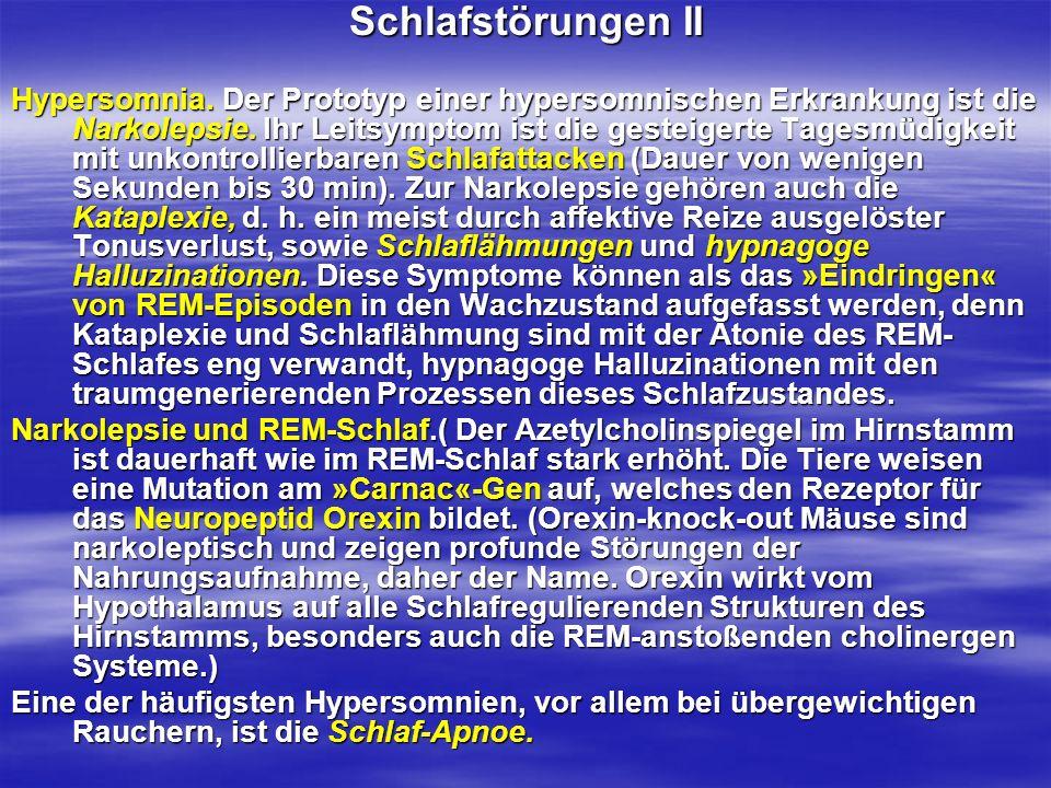 Schlafstörungen II Hypersomnia. Der Prototyp einer hypersomnischen Erkrankung ist die Narkolepsie. Ihr Leitsymptom ist die gesteigerte Tagesmüdigkeit