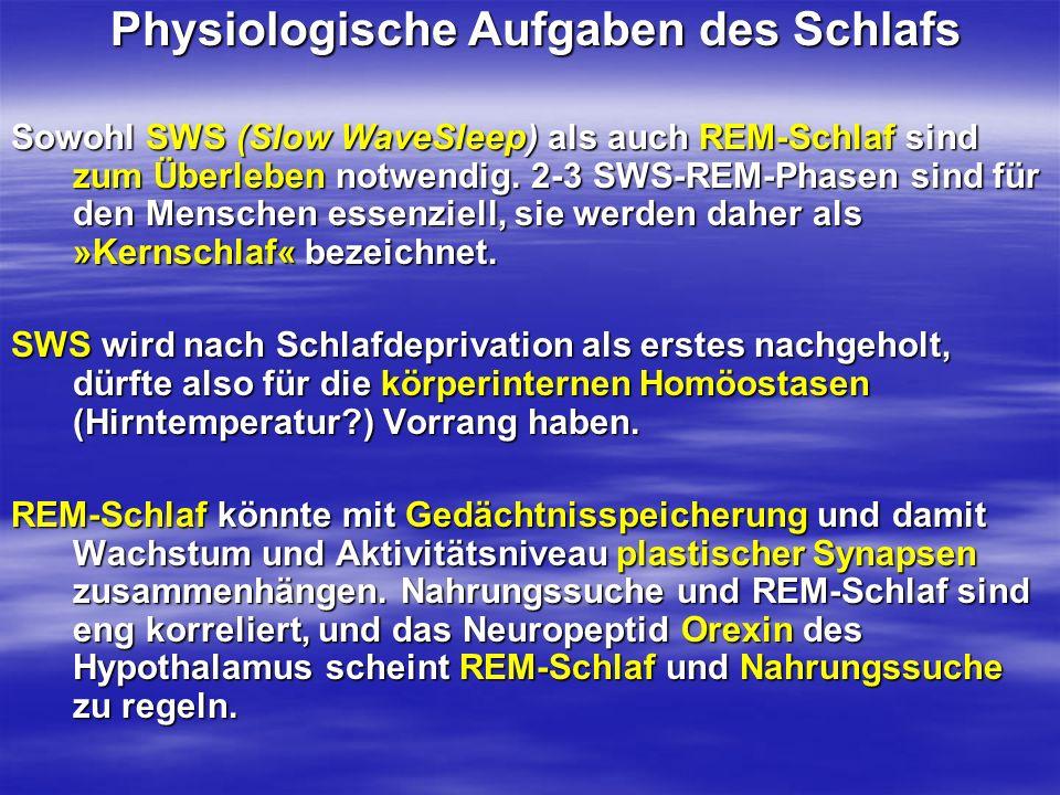 Physiologische Aufgaben des Schlafs Physiologische Aufgaben des Schlafs Sowohl SWS (Slow WaveSleep) als auch REM-Schlaf sind zum Überleben notwendig.